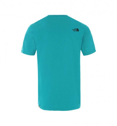 Camiseta M/c Casual_Hombre_THE NORTH FACE M S/s Mount Line Tee