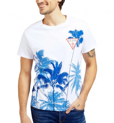 Camiseta M/c Casual_Hombre_GUESS Windswell Cn Ss Tee