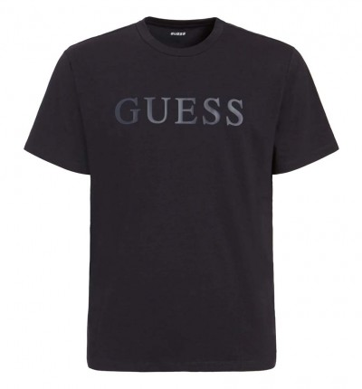 Camiseta M/c Casual_Hombre_GUESS Ss Alphy T-shirt