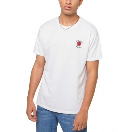 Camiseta M/c Casual_Hombre_KAOTIKO M/c Stay True Washed