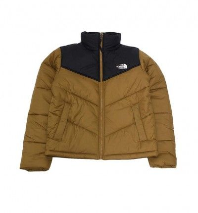 Anorack Casual_Hombre_THE NORTH FACE Synthetic Jkt